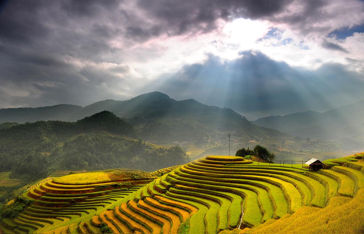 Bán nhớt BP Vistra giá rẻ tại Hà Giang