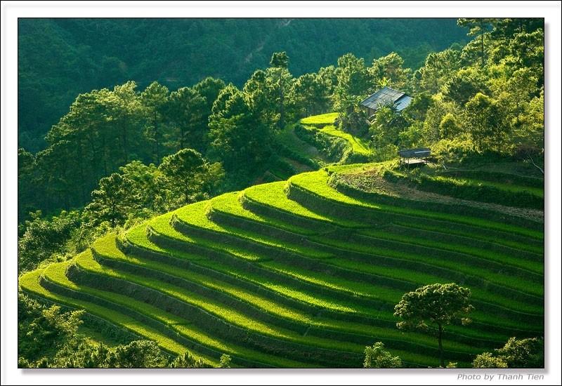 Bán nhớt BP Vistra giá rẻ tại Lai Châu
