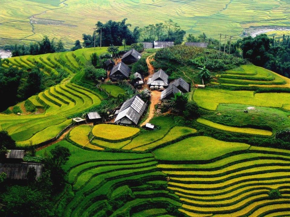 Bán nhớt Liqui Moly giá rẻ tại Lào Cai