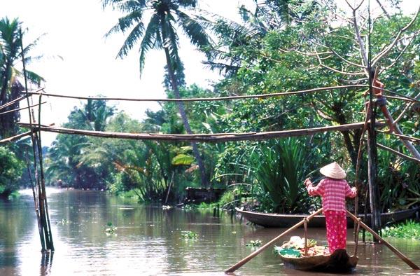 Bán nhớt Voltronic giá rẻ tại Vĩnh Long